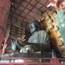 奈良の名所を遊び倒すぞー‼️ その三