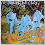 『Chantells「Waiting In The Park」』の画像