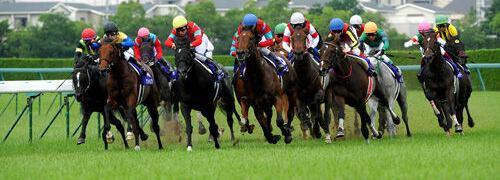 リーマン指数で競馬予想 イメージ画像