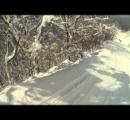 小5男児 スキー場で立ち木にぶつかり死亡  「白山一里野温泉スキー場」