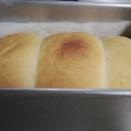 蜂蜜入りの食パンを焼きました。