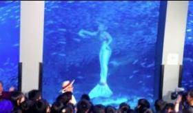 【人魚】  日本の水族館で見られるマーメイド(人魚)に対して、海外の反応が冷ややかだった件