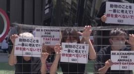 【マジキチ】「卵を食べないで!」 動物愛護団体が五輪関係者に訴え