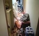 なあ消火器ぶちまけた部屋ってどう掃除すればいいんや?