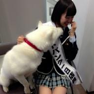 NMB 渡辺美優紀 お父さんにキスされそうになる(画像あり) アイドルファンマスター