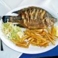 タイ人「魚の中で一番美味しいのはティラピアだよね?」