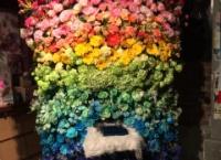 【AKB48】岡田彩花生誕祭のお花が凄い…