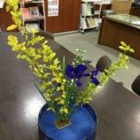 『今週のお花』の画像
