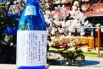 山野酒造の限定日本酒!袋吊りしずくっていうお酒の予約が始まってる!