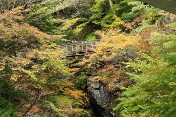 秋のみたらい渓谷・なめご谷・大峰山脈展望ライン