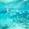 宮古島 聖地巡り(3)〜熱帯魚いっぱい吉野海岸〜