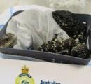 スーツケースに入れたトカゲ19匹を持ちだそうとした日本人の女、メルボルンの空港で逮捕