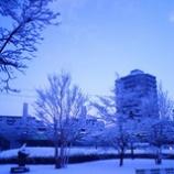『また雪の日曜日』の画像