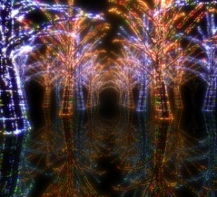 植物が照明になる未来。光を蓄え、繰り返し充電できる発光植物が作り出される