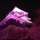 『浜松城がピンクにライトアップ!? 乳がん検診普及活動の一環「ピンクリボンデー」に伴う実施 - 10月1日22時まで』の画像
