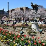 『いつか行きたい日本の #名所 #鶴舞公園』の画像