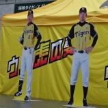 『甲子園~'16.7月③阪神vs.ヤクルト~「ウル虎の夏2016」』の画像