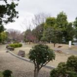 『3月の都立東大和南公園』の画像