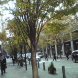 『(番外編)東京・丸の内オフィス街風景』の画像