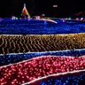 完全なるデートスポット(千葉県最大のイルミネーションスポットに密着しまっせ)