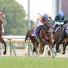 『【NHKマイルC結果】シュネルマイスターがゴール寸前差し切りV! 外国産馬20年ぶりの優勝』の画像