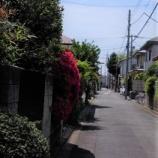 『我が街の花Ⅱ;東大和市』の画像