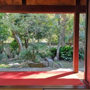 娘 太山寺 安養院に行く