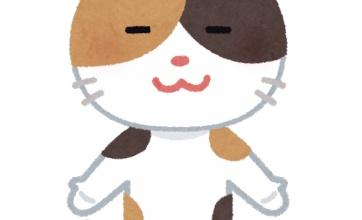 【ヤバイ】コロナは一見無症状の猫の肺にも長期炎症を確認