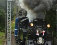 『東武鉄道SL「大樹」運転開始!』の画像