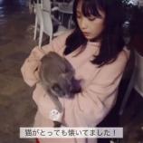 『「猫がとっても懐いてました!」 ...懐いてるか?ww 与田ちゃん動画です!【乃木坂46】』の画像
