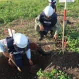 『2017.11.22(水)地雷処理』の画像