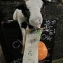 ハロウィンなのに、なぜか牛が看板に乗ってます…