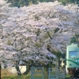 『大井川鐵道 21000系』の画像