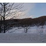 『冬景色』の画像