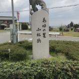 『小鮎と遊ぶ 7 (4/30 北小松)』の画像