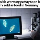『寄生虫卵で難病治療』の画像