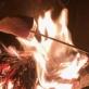 薪焼きで地グルメを味わう! 冬キャンプ × グランピングの楽しみ方 |ファームグランピング 京都天橋立