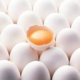 『賞味期限が軽く切れた卵って食える?』の画像