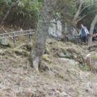 『奥千本と西行庵』の画像