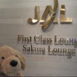 『中国へ引越です~【成田空港 Sakura Lounge】』の画像