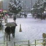 『(東京)雪景色・赤羽』の画像