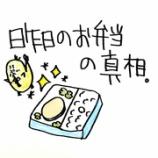 『🍱昨日のお弁当の真相🍱』の画像