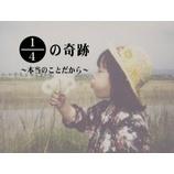 『入江富美子監督が関西で講演します』の画像