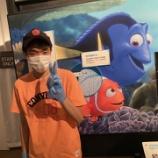 『【福岡】PIXARのひみつ展』の画像