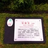 『💕東武ワールドスクウェア💕❽』の画像