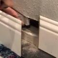 子ネコはどこから入ったの? 部屋の壁の中から鳴き声が聞こえる。そこを壊して救出だ! → 結果…