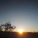 『複雑な 朝』の画像