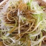 『【牛丼:すき家】白髪ねぎ牛丼』の画像