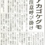 『埼玉県内で毒蜘蛛セアカゴケグモ見つかる!』の画像