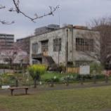 『都立東大和公園の桜Ⅰ;東大和市』の画像